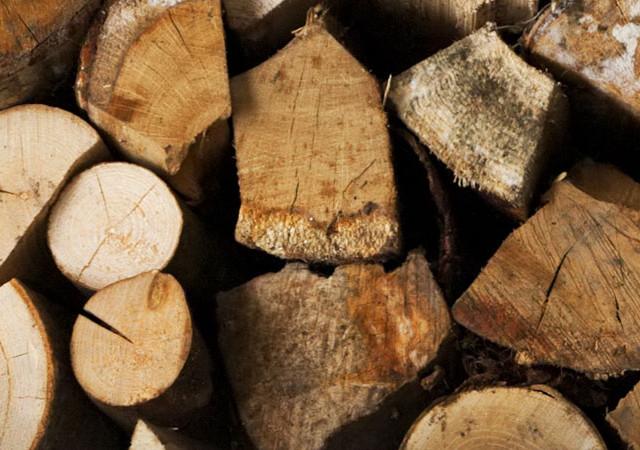 La legna, un combustibile naturale